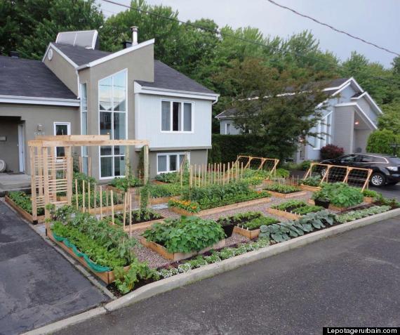 florida lifts ban on front yard gardens